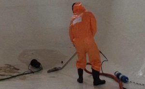 Water and Mold Damage Restoration Cleanup