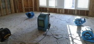 Mold and Water Damage Remediation Job In Progress