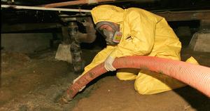 Water Damage Upper West Side Technician In Crawlspace