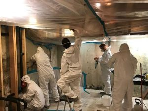 911restoration-mold-removal-manhattan